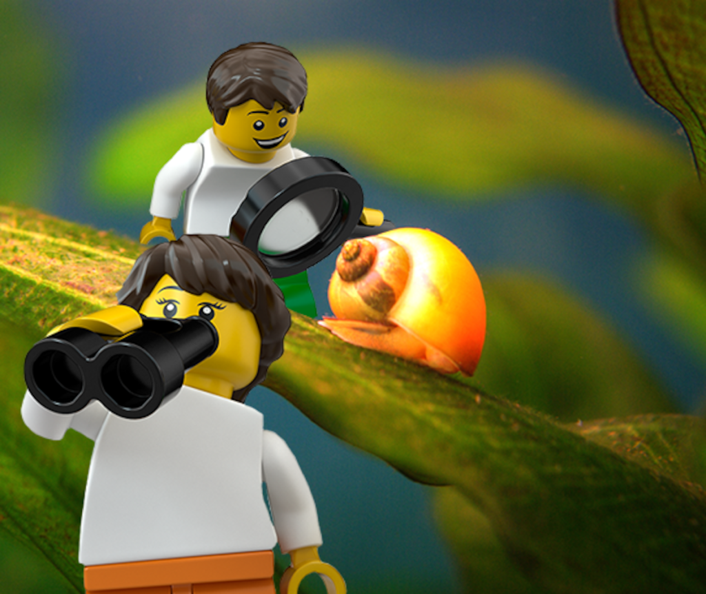 glowing-snail-connect-image-lego-education
